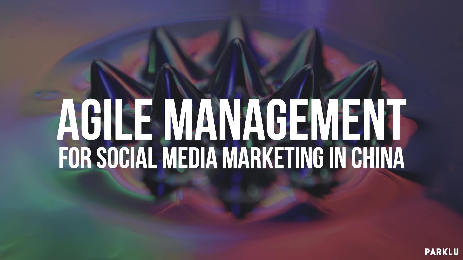 Agile Management- for social media marketing in China